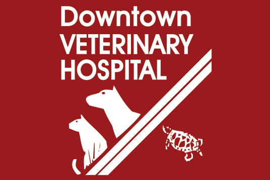 Downtown Veterinary Hospital